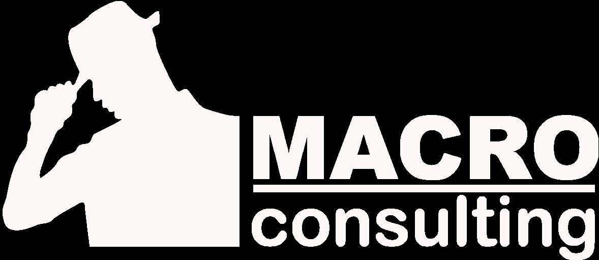 macroconsultingw logo 1 - Консалтинг и управление недвижимостью в Москве